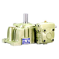 Double Worm Gear Reducer - Standard Type