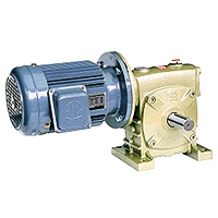 Worm Gear Reducer Combination Type - Motor
