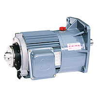 Gear Reducer Motor -3 - Phase (DC24V Power For Brake Unit) Gear Reducer Motor 1HP (0.75KW)